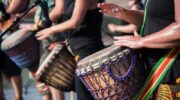 Percussion: The Main Items of the Assortment and Their Features