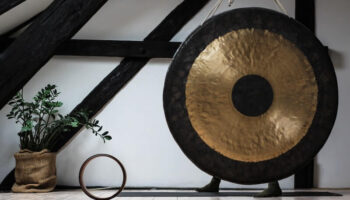 Chinese National Musical Instruments